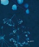 tete-de-lit-en-tissu-bleu-coco-hellein-sifnos