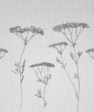 Tête de lit Blanc Axelle Grosperrin Végétal